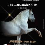 Cheval Passion 2019